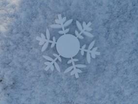 Schneekristall Motiv 9